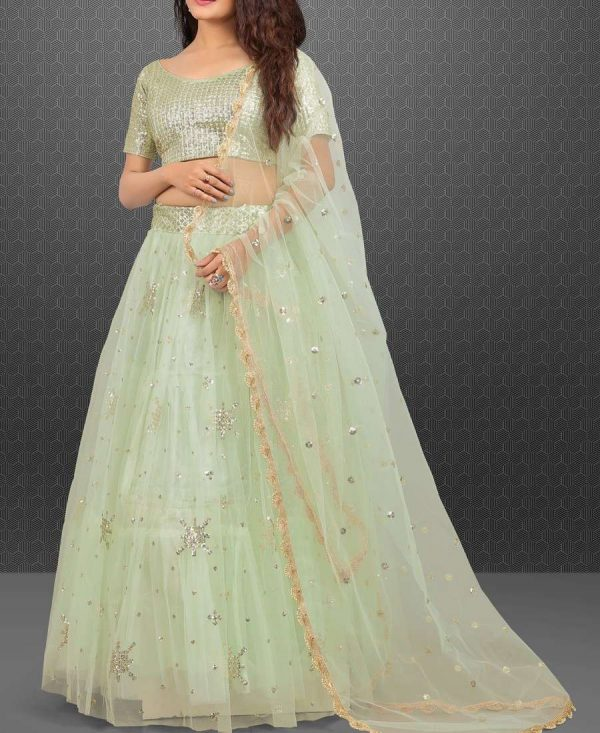 Light Pista Color Embroidery Worked Net Lehenga