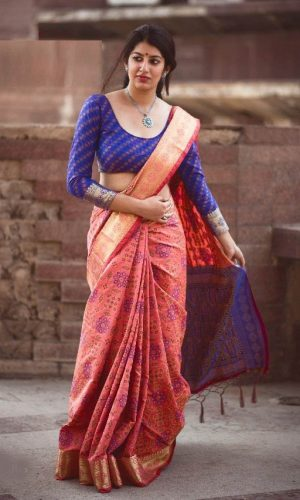 Exclusive Woven Patola Silk Gajri Saree
